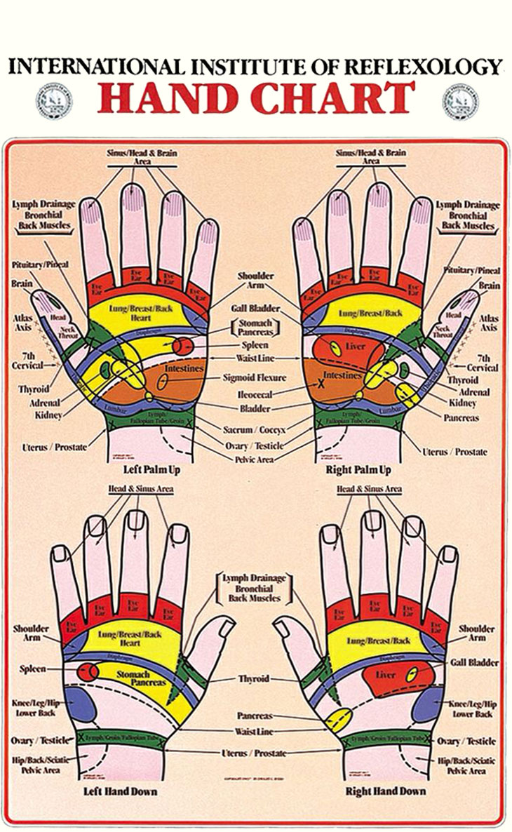 International Institute of Reflexology Hand Chart